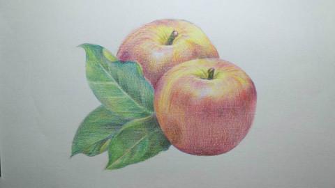 初级素描水果 步骤