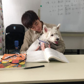 带宠物来上课的打折…