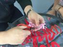 教学生剪纸