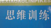 三年级奥数精练精讲(一)续-聂春红